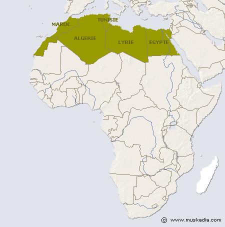 afrique-du-nord-carte-du-monde